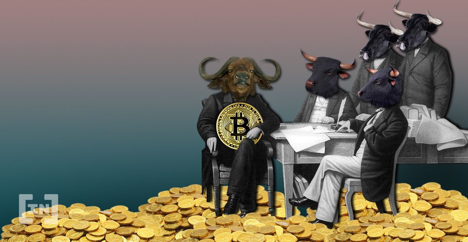 bic government btc bitcoin bullish.jpg.optimal
