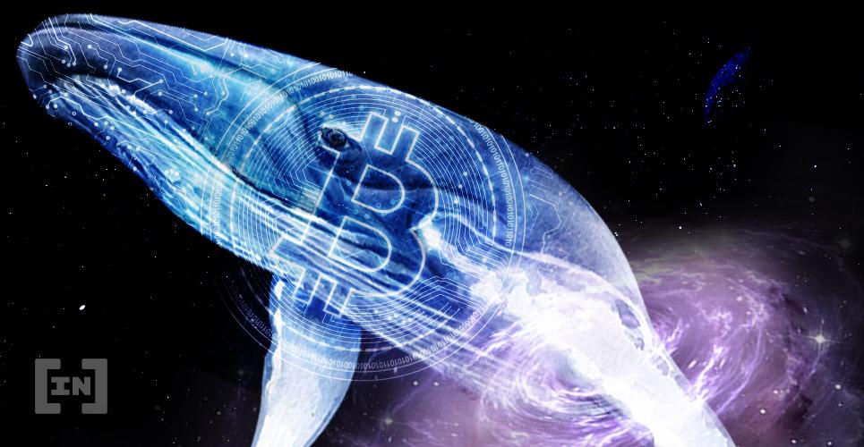 Bitcoin hold