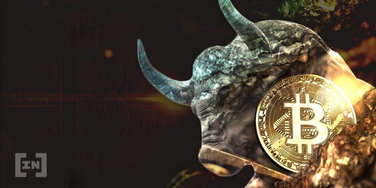Bitcoin bull btc
