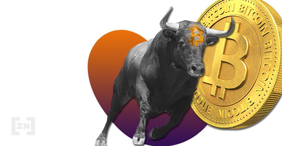 Bitcoin toro