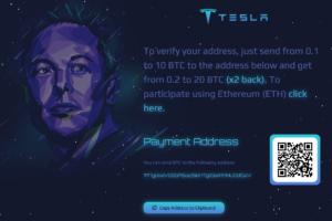 Estafa Elon Musk y Bitcoin