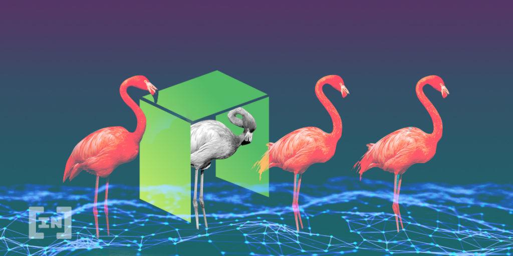 NEO y Flamingo