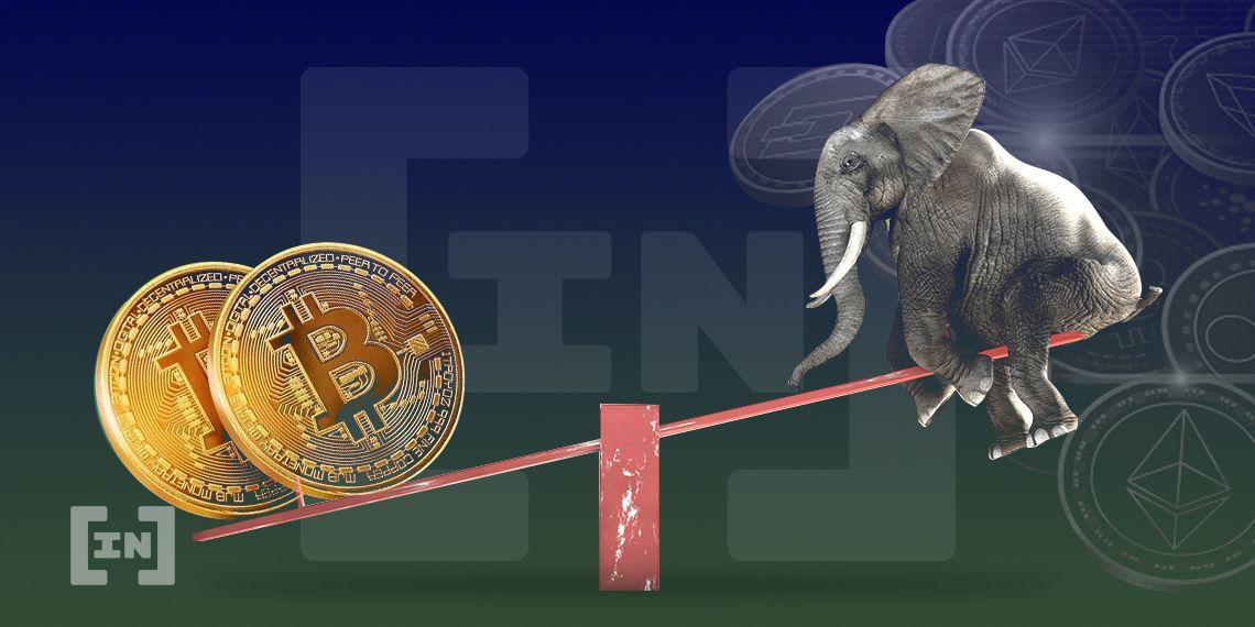 Altcoins despegan en dólares pero contra Bitcoin siguen deprimentes ¿Subida legítima?