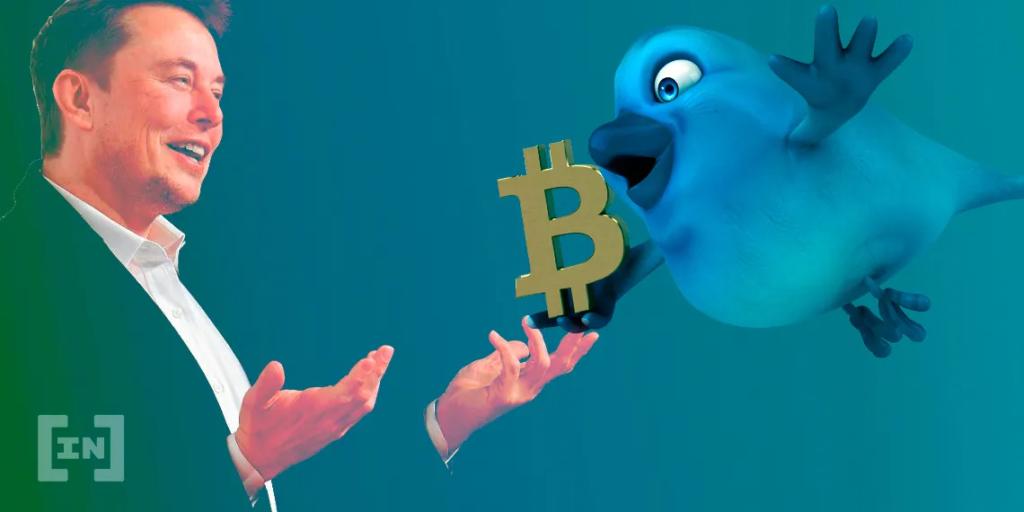 Twitter Bitcoin Elon Musk