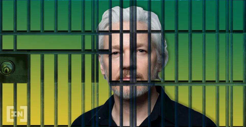 bic assange.jpg