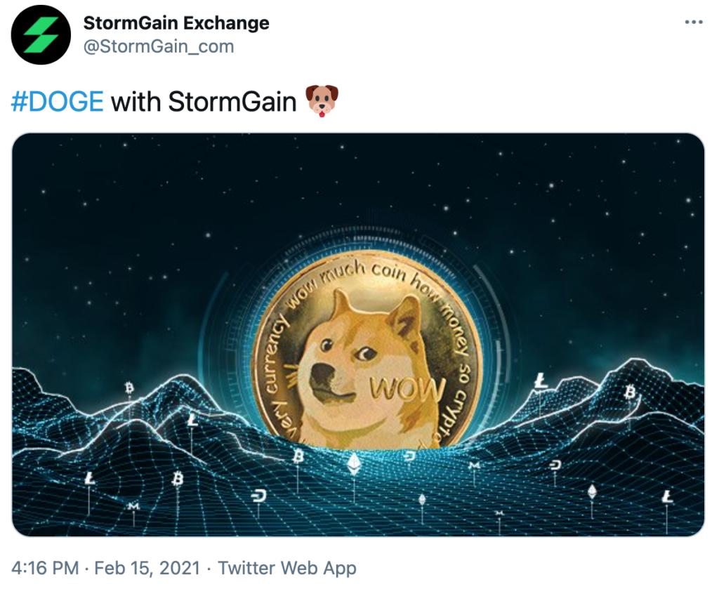 Dogecoin Stormgain