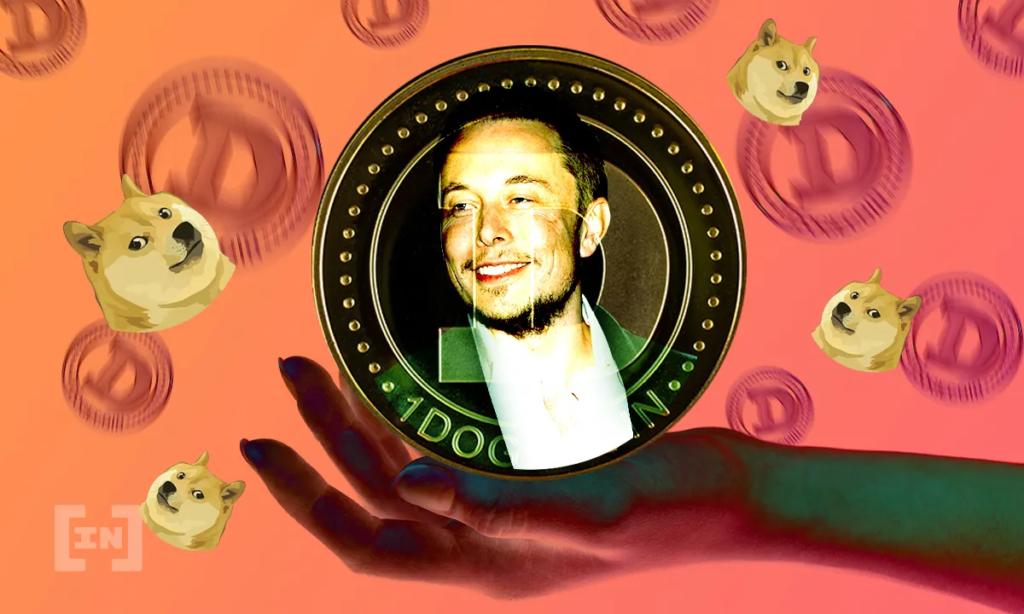 Doge Elon Musk