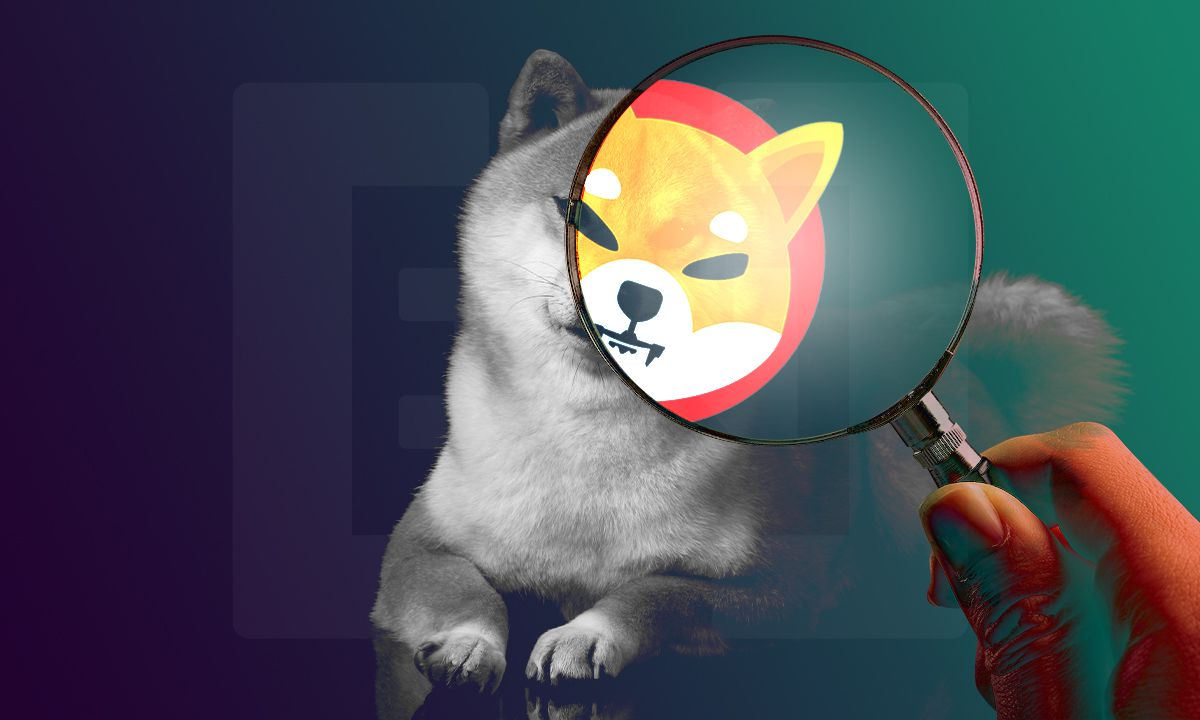 Shiba Inu y la revolución de las criptomonedas meme ¿Valor real o un hype generacional?